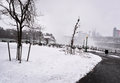 Snowing in the park winter seasonal Royalty Free Stock Images
