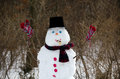 Snowman celebrating polar vortex a throws his arms up in joy at the cold we are having Royalty Free Stock Image