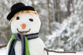 Snowman closeup of a smiling with carrot and scarf Royalty Free Stock Photos