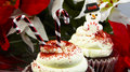 Snowman cupcakes close up dessert food Stock Images