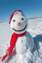 Snowman look in sky and wait spring Royalty Free Stock Photography