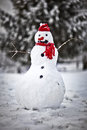 Snowman a standing in a frozen lanscape Royalty Free Stock Photography