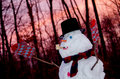 Snowman at sunset a out in a wintry woods Royalty Free Stock Photos