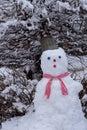 Snowman under a snowy tree,