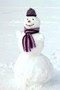 Snowman On White Snow  Backgro...