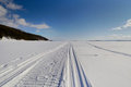 Snowmobile trail stretching into the distance Royalty Free Stock Photo