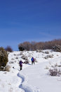 Snowshoe hikers ascend a hill in the mountains of colorado Royalty Free Stock Images