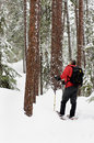 Snowshoeing - Killarney, Ontario Royalty Free Stock Photo