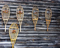 Snowshoes Royalty Free Stock Photo