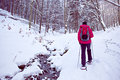 With snowshoes in a winter forest woman walking Royalty Free Stock Photography