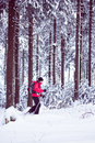 With snowshoes in a winter forest woman walking Royalty Free Stock Photo