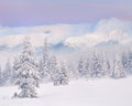 Snowstorm in the mountains Royalty Free Stock Photography