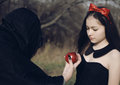 Snowwhite from fairy tales and witch Royalty Free Stock Photo