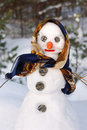 Snowwoman with hat, carrot nose Stock Photo