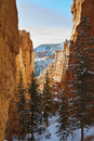 Snowy canyon in utah s bryce national park Stock Images