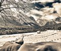 Snowy Landscape of Italian Alps on Winter Royalty Free Stock Images