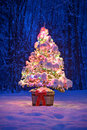 Snowy Lit Christmas Tree At Night in a Forest Royalty Free Stock Photo