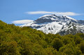 Snowy mountain against the spring forest in pyrenees a is covered with snow there is a green foliage foreground Royalty Free Stock Photo