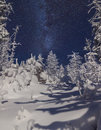 Snowy mountain forest at night with stars Royalty Free Stock Photo