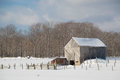 Snowy old  barn with diagonal boards and barnyard landscape Royalty Free Stock Photo