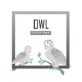 Snowy Owls Flat Design Vector Illustration Royalty Free Stock Photo