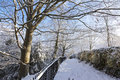 Snowy path in a park empty snow covered at winter Royalty Free Stock Photography