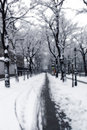 Snowy path in Vienna Stock Images