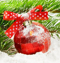 Snowy red Christmas ball Royalty Free Stock Image