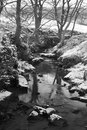 Snowy river scene Stock Images
