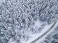 Snowy road with a car in the forest bird`s eye view Royalty Free Stock Photo