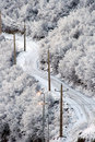 Snowy road in Wintry forest Royalty Free Stock Photo