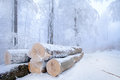 Snowy stack of timber Stock Photo