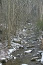 Snowy stream a dusting of new snow falling along a in the woods Royalty Free Stock Photo