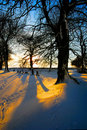 Snowy sunset Royalty Free Stock Photos
