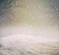 Snowy winter background with trees Royalty Free Stock Images