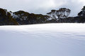Snowy winter landscape a cold with rocks and trees in mountains australia Stock Photo