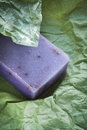 Soap bar with natural ingredients Royalty Free Stock Photography
