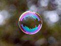 Soap bubble flying city reflected in park Royalty Free Stock Photos