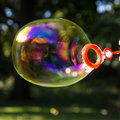 Soap bubble in park in summer Stock Photo