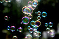 Photo : Soap bubbles vector
