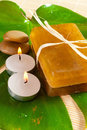 Soap and candle on a green leaf Royalty Free Stock Photo