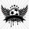 soccer ball ang wing Royalty Free Stock Photo