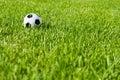 Soccer Ball Football on Grass Royalty Free Stock Photo