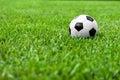 Soccer Ball  Futbol on Grass Royalty Free Stock Photo