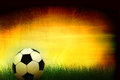 Soccer ball in grass background d image Stock Images