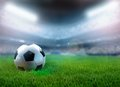 Soccer ball on the grass inside stadium Stock Image