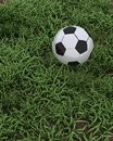 Soccer ball on grass pitch Royalty Free Stock Image