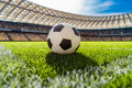 Soccer ball on grass on soccer field stadium Royalty Free Stock Photo