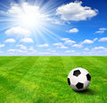 Soccer ball on grass with sunny sky Royalty Free Stock Image
