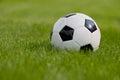 Fotbalový míč na zelený